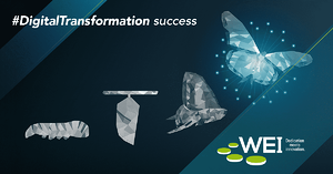 Digital Transformation Success