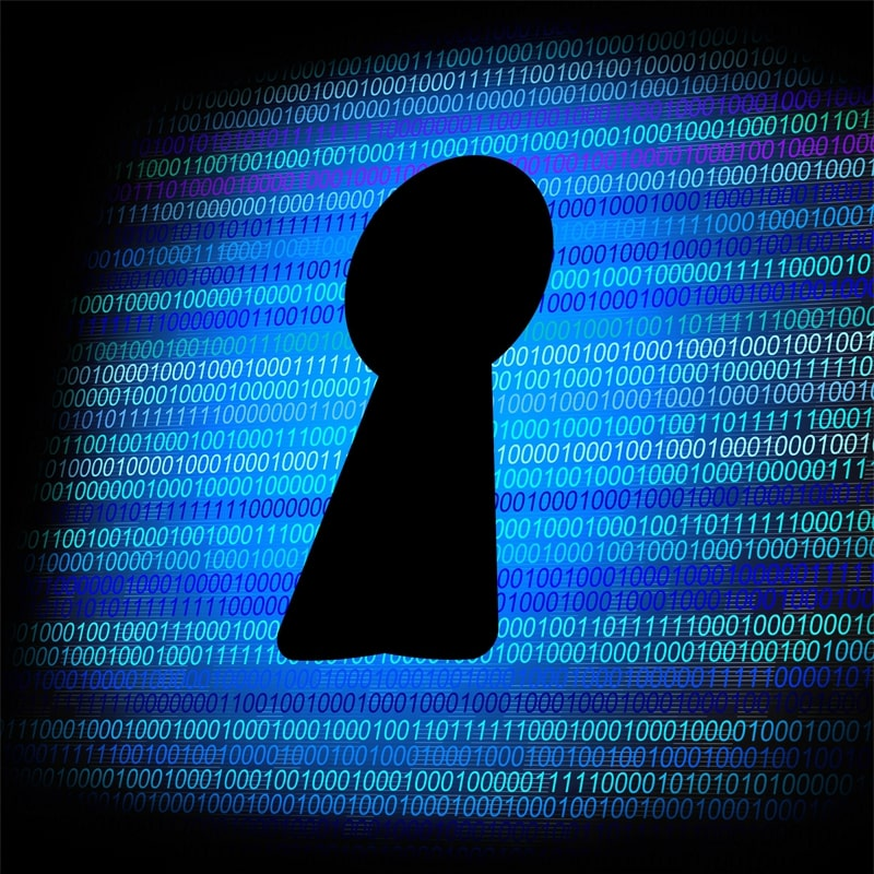 Avoid Security Breaches with Data Protection Technology